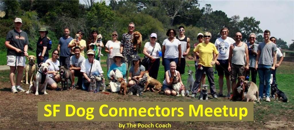 sf dog connectors meetup