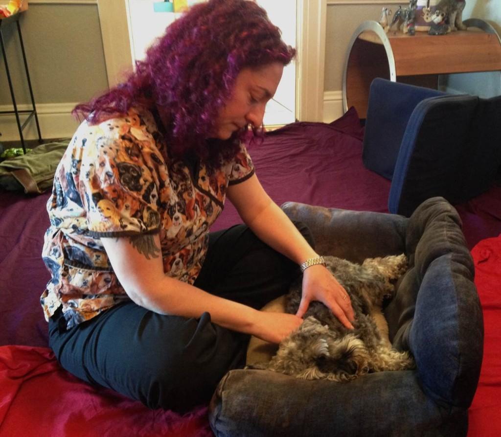Relaxing Rex Canine Massage