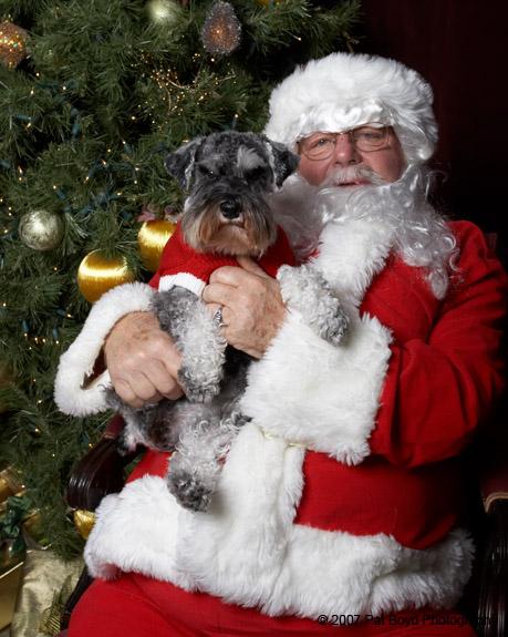 pooch coach dog trainer san francisco