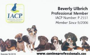 pooch coach credentials IACP